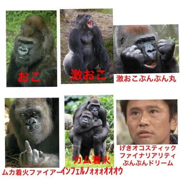 上級 ぷんぷん 激 最 おこ 丸