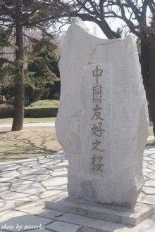 中国大連生活・観光旅行ニュース**-大連 労働公園で合同お花見会