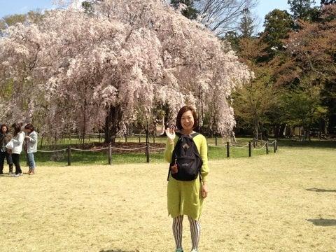 虹色ハートで輝く~Tree of Heart~世界が虹色に輝きますように☆・゜・。・゜-image