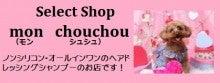 Select Shop  mon chouchou