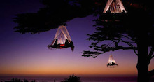 ツリーキャンプ
