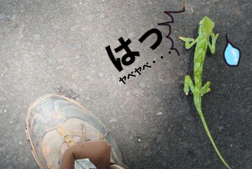 "Road To World Trip ""自転車""世界一周踏闘記-011"
