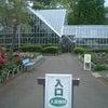 東京都薬用植物園と江戸東京たてもの園に行って来ましたの画像