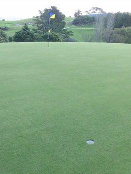 ゴルフ天国ニュージーランド発!「1打でもスコアアップするための上達ヒント集」-1グリーンに2カップ