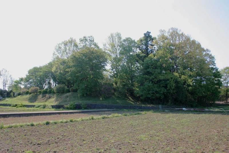 藤橋城/北の田んぼから見た城跡