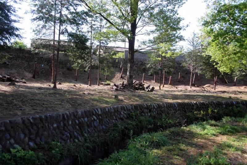 藤橋城/公園の西側
