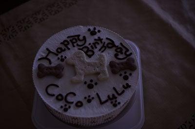風・凪&COCO・LULUファミリーのdiary