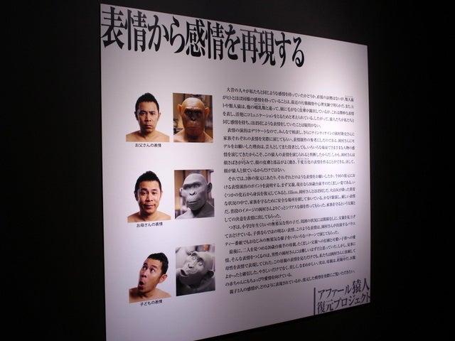 フィックル・ワンダラー~世界一探訪編~