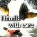 $rockBlock-Handle with care