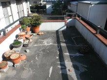 (有)東北ケミカル工業のブログ『一服で~す。』-駐車場屋根 施工前2
