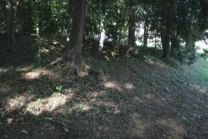 今井城/空堀脇の土塁