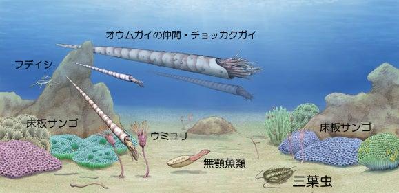 川崎悟司 オフィシャルブログ 古世界の住人 Powered by Ameba-オルドビス紀の風景