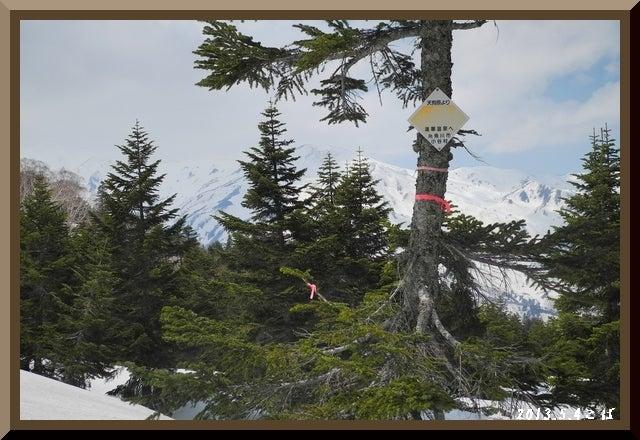 ロフトで綴る山と山スキー-0504_1251