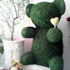 母の日には、お花を。の記事より