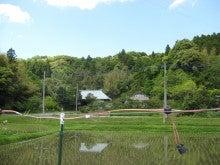 ロングウッドステーション Official Blog-田園風景