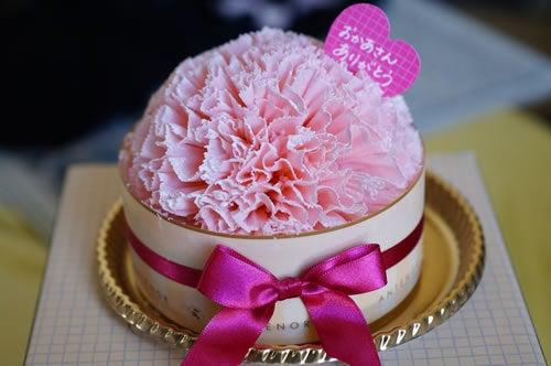 いぐまの生態-母の日ケーキ