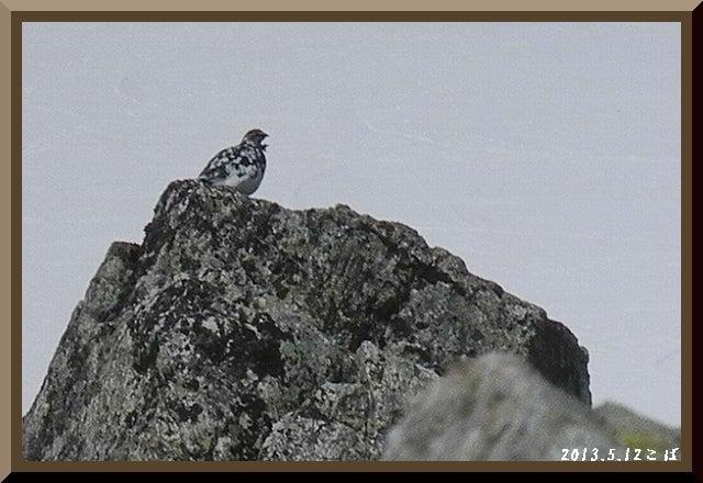 ロフトで綴る山と山スキー-0512_1153