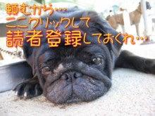 【渋谷 マインドブロックバスター】ameblo-dokusya