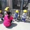 保育に『学び』を取り入れた保育園の視察の画像