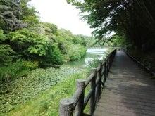かみちゃんのブログ-IMG_20130517_142734.jpg