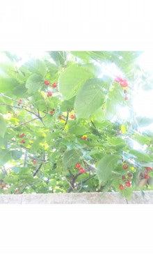 うたうように、わらうように~心地よい日々を暮らす~-SH3E03150002.jpg
