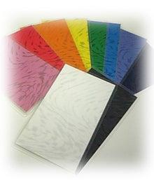 3Dフラワーペーパークラフト通信講座  カラーセラピスト養成講座 母子手帳カバー               Jolie Papier in ホーチミン
