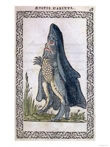 海の中の妖しい存在:シービショ...