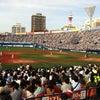 野球観戦!の画像