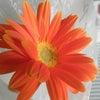 幸せを呼ぶAKI FLOWERSのミニブーケ くにたちハッピーマーケット2013新緑市にて⑧の画像