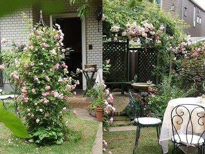 お花のあるちょっと素敵な暮らしに憧れて・・・-ROSE  GARDEN SALON