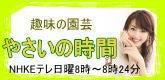 $有村実樹オフィシャルブログ「みきの休日」Powered by Ameba