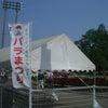 埼玉最大のバラ園に行ってきましたの画像
