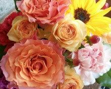 長崎*AEOS*オーラソーマショップ pink rose-1369469476928.jpg