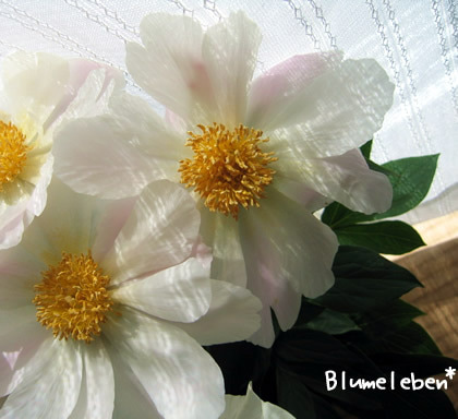 3分フラワーアレンジで簡単♪おうち花 @おさんぽ花育-一重咲き 白(ごく淡いピンク)の芍薬