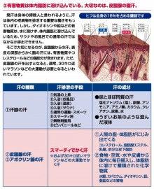 ★☆熊本市南区野口3丁目☆★ おうちサロン~Pavane・パヴァヌ~のブログ ♪