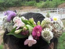 馬を愛する男のブログ Ebosikogen Horse Park-花冠