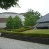 群馬県立自然史博物館と富岡製糸場に行ってきましたの画像