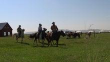モンゴルで働くジャーナリストのblog-アルタンボラク 乗馬電圧 宿泊 遊牧民