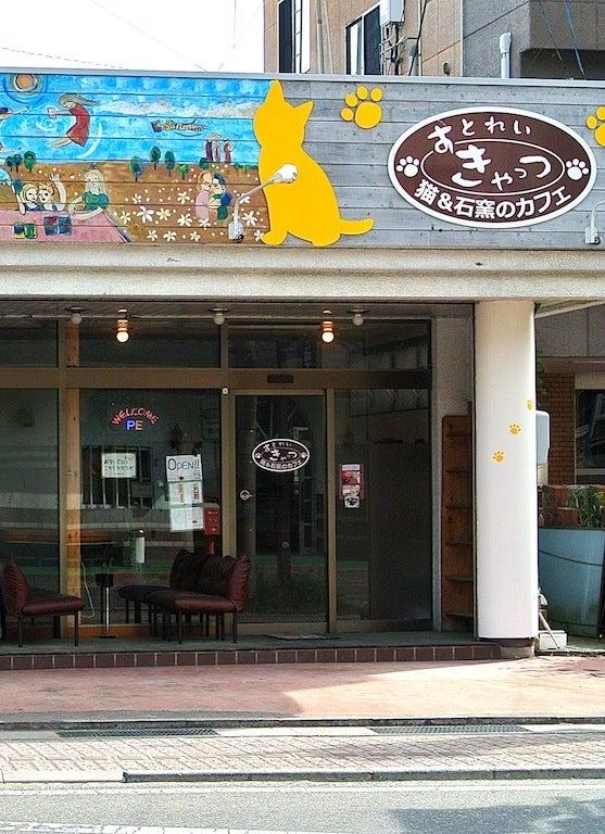 $猫と遊べるカフェ「すとれいきゃっつ」@高遠-すとれいきゃっつ