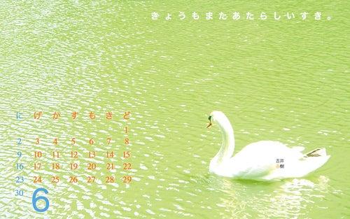 作家 吉井春樹 366の手紙。-1306カレンダー作品