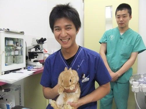 調布 病院 田園 動物 東京都調布市周辺の口コミでおすすめ動物病院3選!夜間・救急対応やトリミング、健康診断もできる動物病院、往診、送迎可能な動物病院をご紹介!