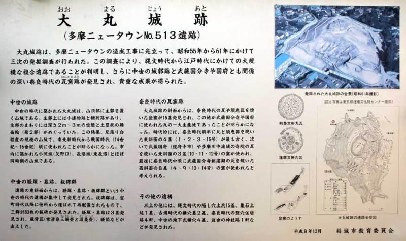 大丸城/説明板(全体)