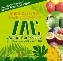 JACブログ-オンライン案内