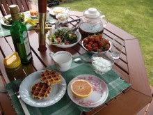 のんたんの家庭菜園ブログ