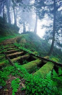 古代の鋼鉄馬車の線路