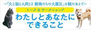 石塚恵子のおしゃべりモーニングのブログ-プロジェクトバナー.jpg