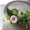 ミルフィーユのバラの画像