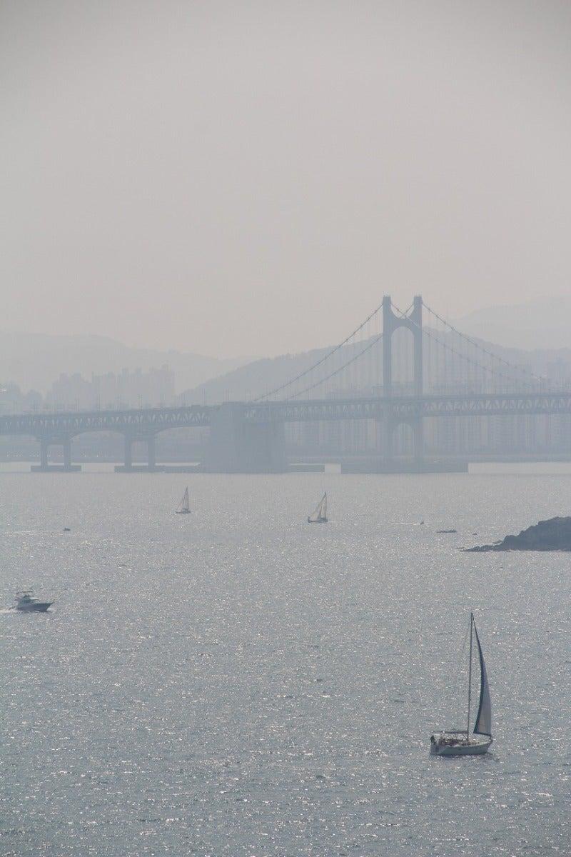北陸富山の大工棟梁『肥塚建築』 建物・自然探訪-広安大橋