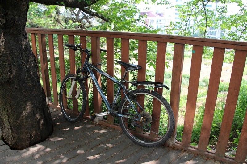 北陸富山の大工棟梁『肥塚建築』 建物・自然探訪-道端に置かれた自転車