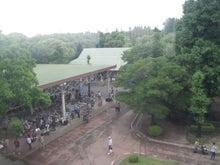いちごDiary-くまレレ会場